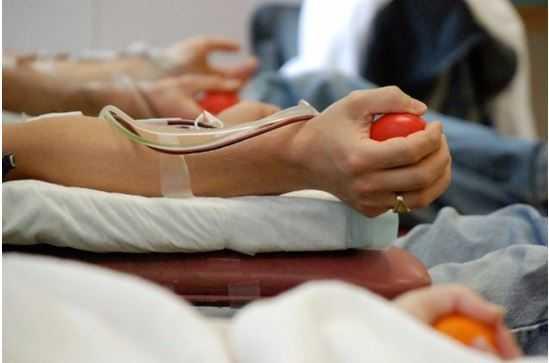 В 2021 году в России начнет работать Федеральный регистр доноров костного мозга