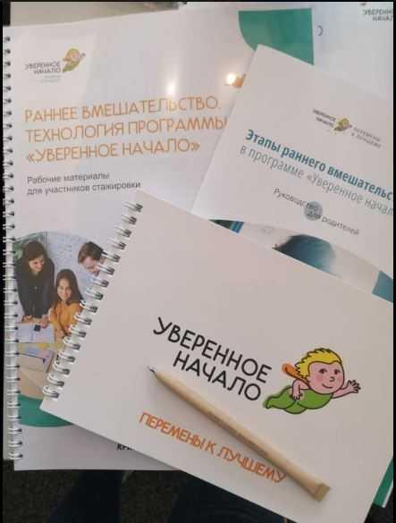 Ранняя помощь детям с ТМНР: итоги стажировки специалистов «Содействия»