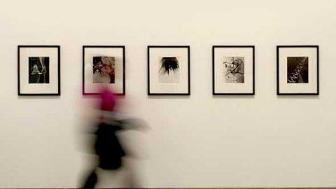 Вышли пособия по созданию доступной среды в музеях для людей с ментальными особенностями