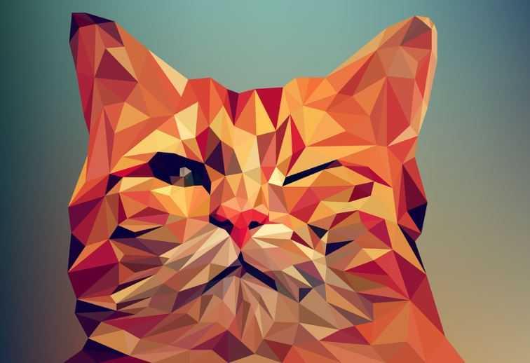 Объявлен конкурс детских рисунков «Нарисуй кота»